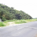田布施・大波野 県道周東田布施線沿い、売土地182.93坪(事業用地)