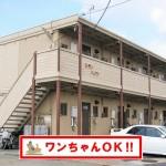 平生町・マックスバリュー近く 賃貸アパート1K(2F・2-C)シティハイツ ※ペット可