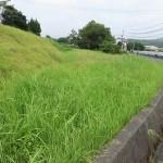 【商談中】田布施・川西 売土地(63.52坪)畑用地